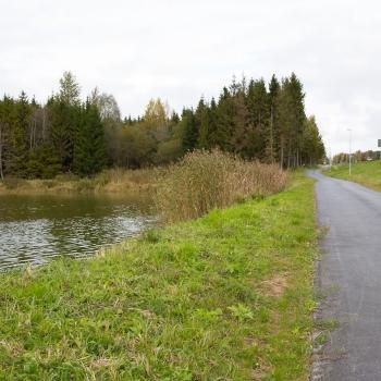 14 км пешеходных и велосипедных трафика